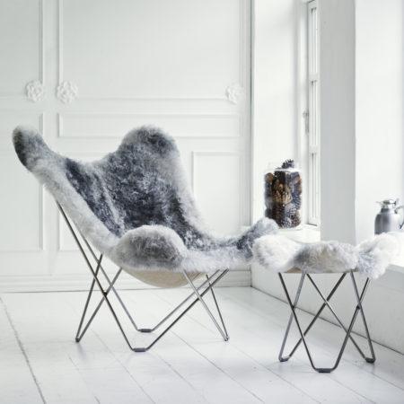Iceland Mariposa Shorn Grey
